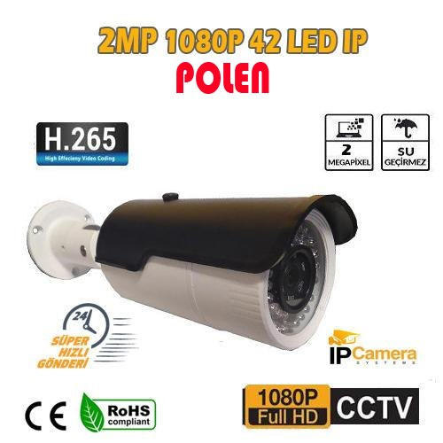 2 MP 1080P 42 LED 3.6 MM DIŞ MEKAN IP GÜVENLİK KAMERASI PL-5060